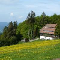 Schullandheim Luginsland